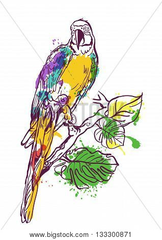 Vector Watercolor Illustration Of Tropical Ara Parrot Sitting On Green Tree. Isolated Colorful Parro