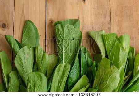 Vegetable, Fresh Green Chinese Cabbage, Bok Choy, Pok Choi Or Pak Choi