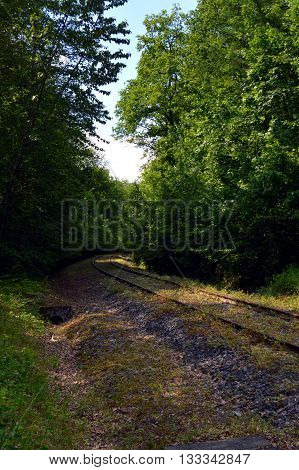 Abandoned railroad track taking off through the forest
