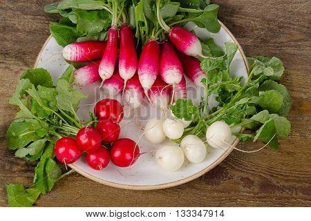 Bundle Of Fresh Organic Radishes