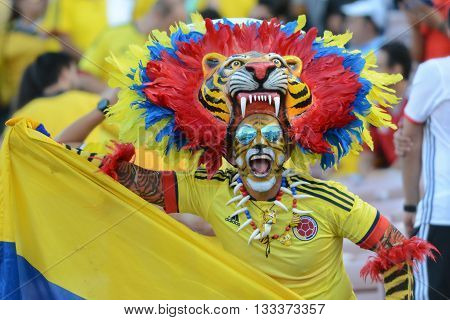 Man In A Tiger Costume