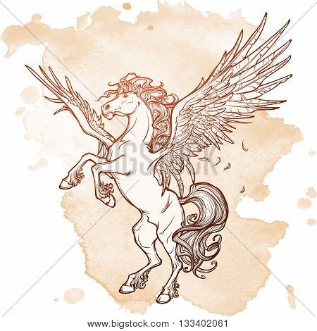Pegasus greek mythological creature. Legendary beast concept drawing. Heraldry figure. Vintage tattoo design. Sketch on a grunge background. EPS10 vector illustration.