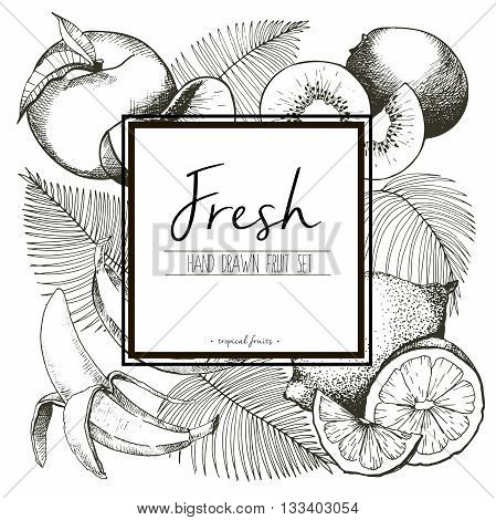 Vector border illustration of fresh tropical fruits with palm leaves. Hand drawn vintage set of vegetarian tasty organic food with white square text template.