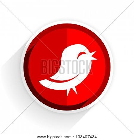 twitter icon, red circle flat design internet button, web and mobile app illustration
