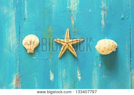 Photo of sea shells on wooden background