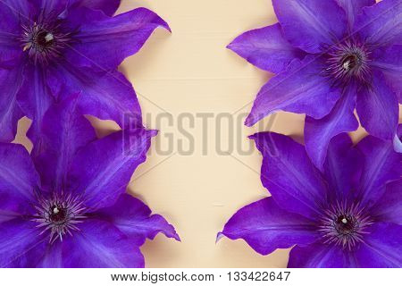 Four purple clematis isolated on wooden desk