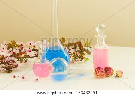 Dry flowers, mortar, vials and glass bottles of tincture or oil, aromatherapy concept