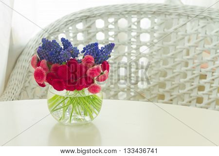bunch of fresh Muscari and Daisy Flowers on white table