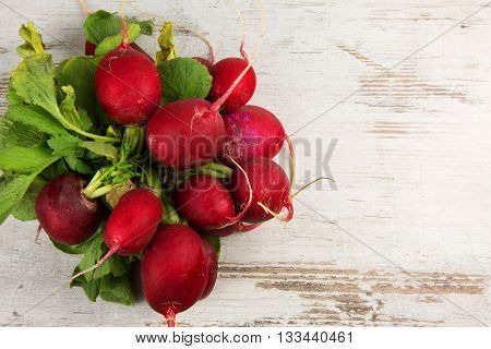 Bunch of fresh radishes on a white old wooden background with empty space for possible text on the right. Horizontal flat top view