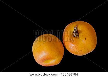 Apricot fruit isolated on black background .