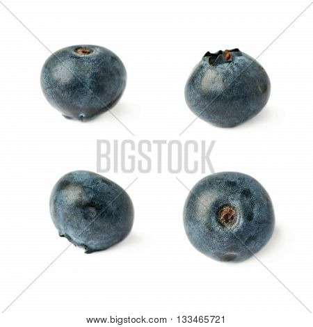 Set of Single berry Ripe bilberry or blueberry over isolated white background