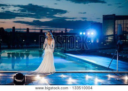 Young Bride In Luxury Wedding Dress. Evening