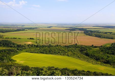 Flat open landscape with large agricultural fields between pockets of lush green woodland trees stretching away to the horizon