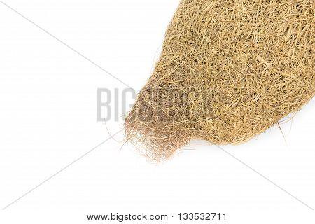 Baya weaver bird nest, skylark nests on white background.