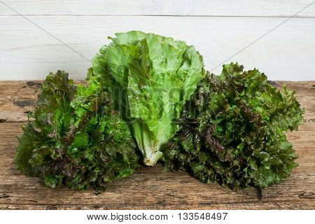 three lettuces on a wooden table background