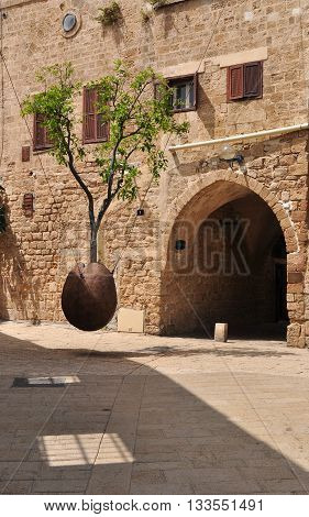 Hovering orange tree in old Jaffa, symbolizing prosperity of Israel with old building at the background.