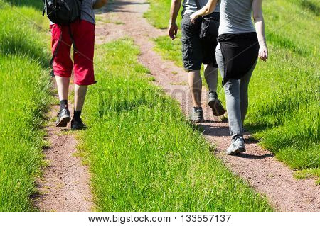 Group of young hikers walking down a trail through lush green grass away from the camera low angle view of their lags conceptual of an active lifestyle