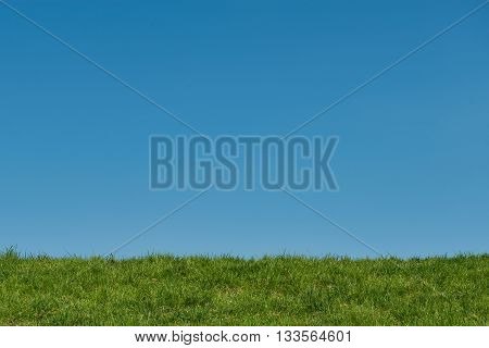 Clear blue sky and a green grass strip