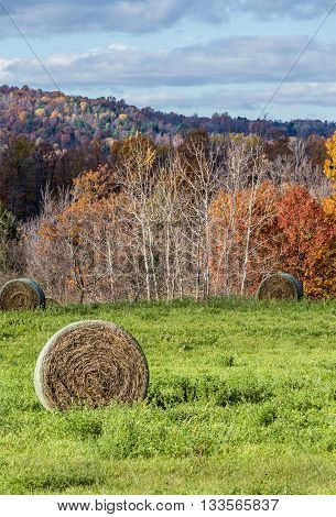 Large Round Bales in Field with Autumn Colored Hills