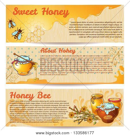 Horizontal honey banner set with headlines sweet honey about honey and honey bee vector illustration