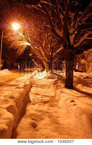 Snow Cap Night