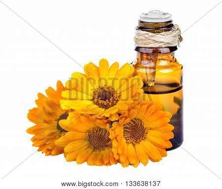 Essential oil made from marigold on a white background