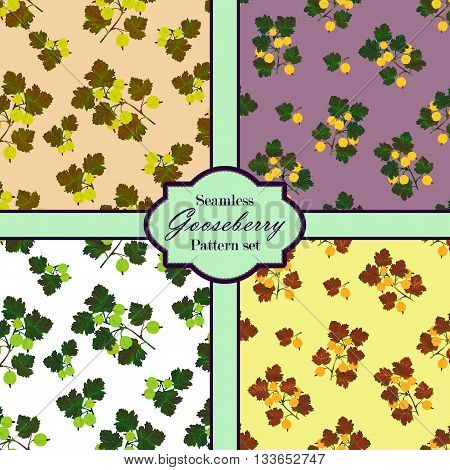 Colored gooseberries seamless pattern set. Vector gooseberry background. Seamless patterns with colored hand draw graphic gooseberries. Vector berries templates.