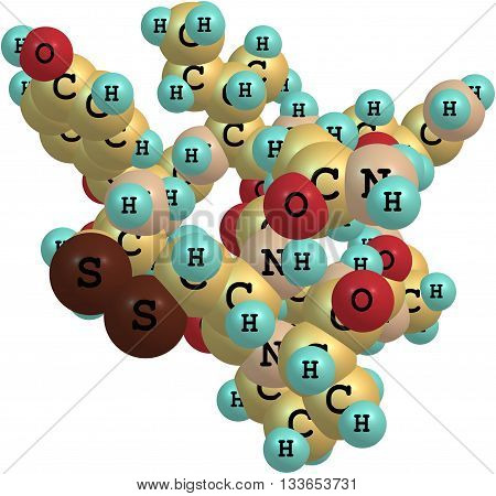 A model of a molecule of oxytocin. It is a hormone produced naturally in large amounts at childbirth causing contractions and to stimulate the flow of milk for breastfeeding. 3d illustration