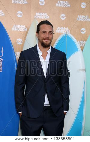 LOS ANGELES - JUN 8:  Ben Robson at the Animal Kingdom Premiere Screening at the The Rose Room on June 8, 2016 in Venice Beach, CA
