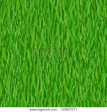 Green grass seamless pattern background. Vector Illustration