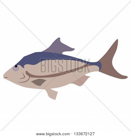 A simple image of a fish is well suited for icons
