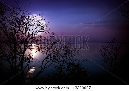 Silhouettes Of Woods And Beautiful Moonrise, Bright Full Moon Would Make A Great Background. Outdoor