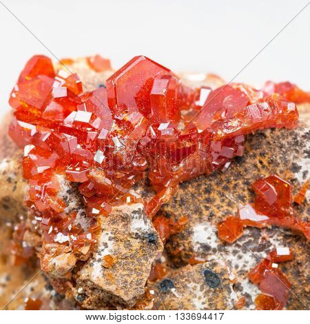 Druse Of Red Vanadinite Crystals On Stone Close Up
