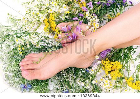 Beautiful woman legs with flowers