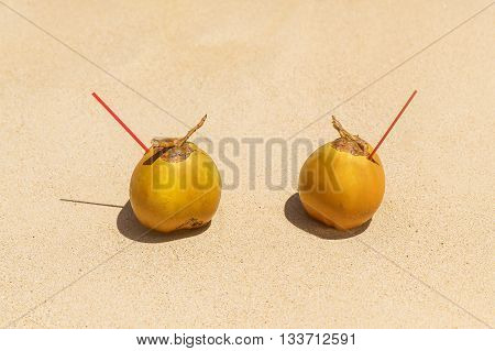 Two coconuts with drinking straw on a sandy tropical beach. Sea in the background . Summer vacation concept .