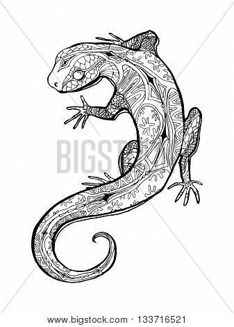 Lizard. Tropical illustration for adult coloring book. Hand drawn line art.