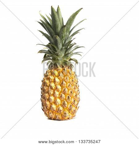 Yellow caribean Pineapple isolated on white background