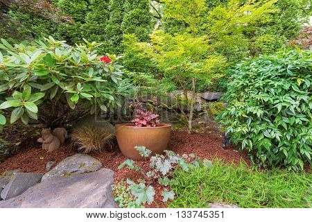 Backyard Garden landscaping gold container pot with plants shrubs trees rocks and bark dust