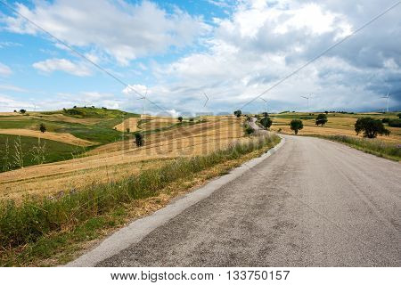 Tarred Road Passing Through Farmland