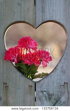 wooden heart shape with flowers for love concept