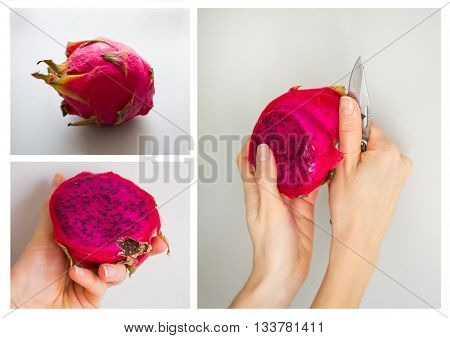 Consistent process of peeling exotic dragon fruit (Hylocereus monacanthus Pitahaya Pitaya) isolated on grey textured background. Bright red violet skinned fruit with violet flesh. Woman hands in peeling process. Artistic retouching.