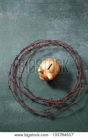 piggybank surruond  by the barbwire ,protect your saving