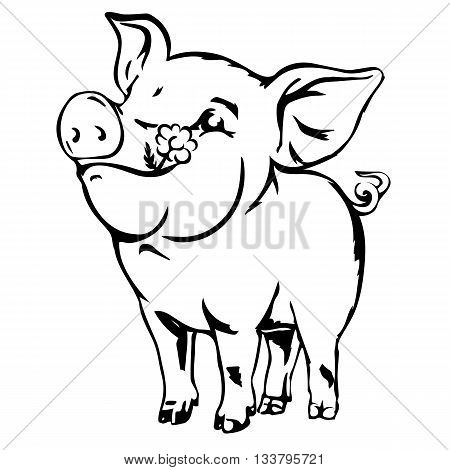 Happy dirty baby pig. Joyful young swine colorless vector sketch isolated on white.