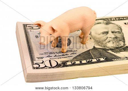 pig on dollars banknotes