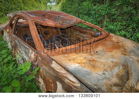 Burnt out rusty car left & abandoned in foliage by side of road