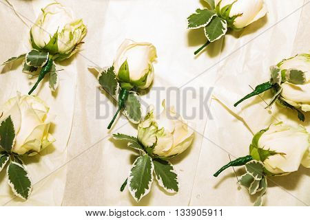 Close up of wedding buttonhole flowers prepared and arranged.