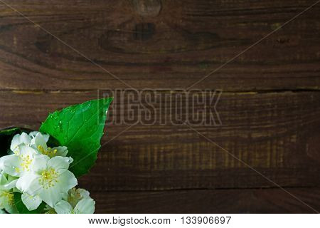 bouquet of jasmine flowers standing in the corner with copy space for greeting card on an old wood background. top view