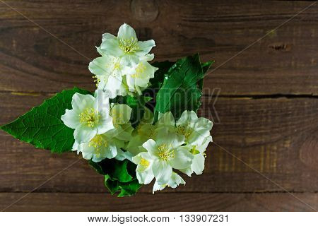 bouquet of jasmine flowers standing in the center on an old wood background. top view