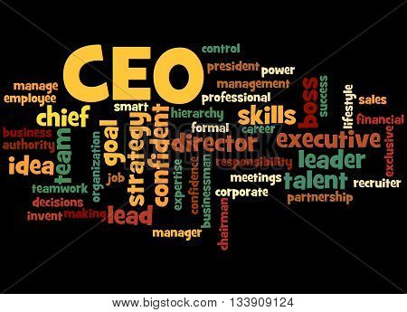 Ceo - Chief Executive Officer, Word Cloud Concept 3