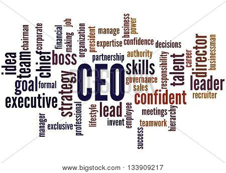 Ceo - Chief Executive Officer, Word Cloud Concept 8